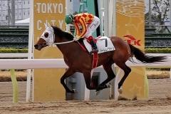 190319 瀧川寿希也騎手 500勝-01