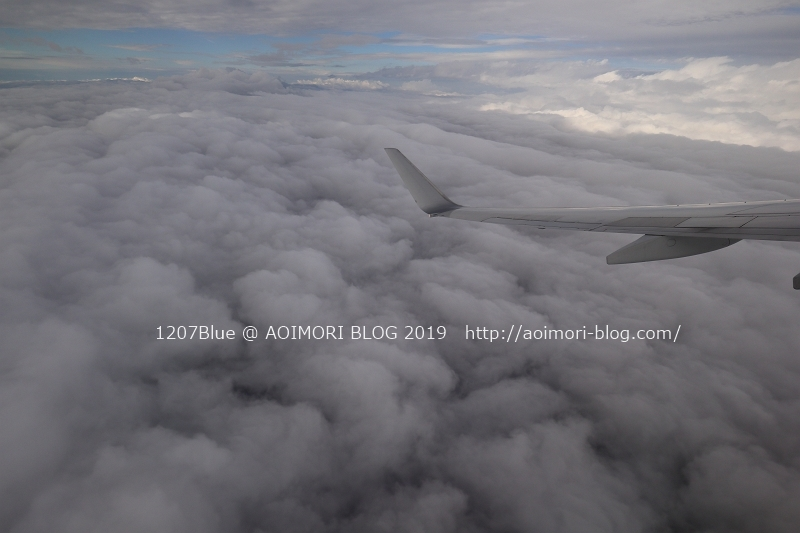 IMG_2002_190316_1207Blue.jpg