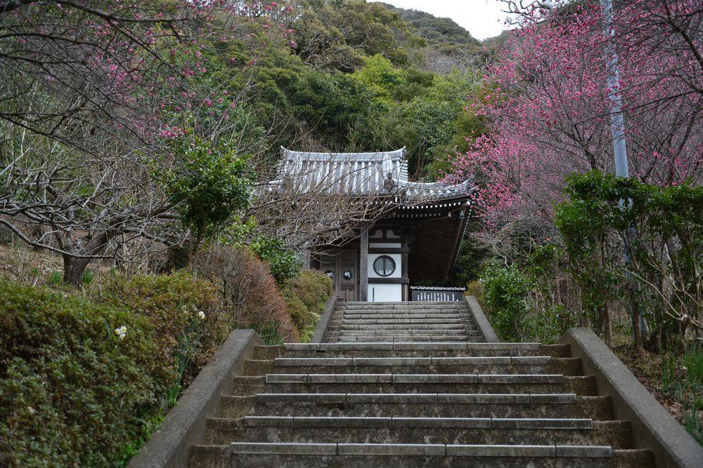 鋸山日本寺-2