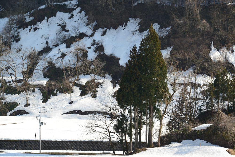 山里 スポットー1