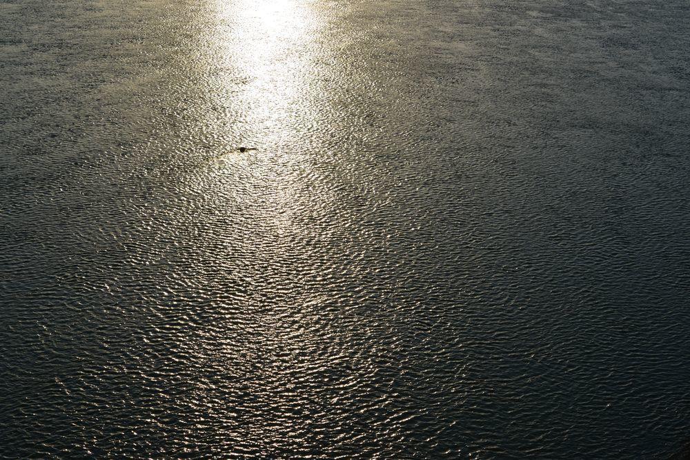 河が光る-5