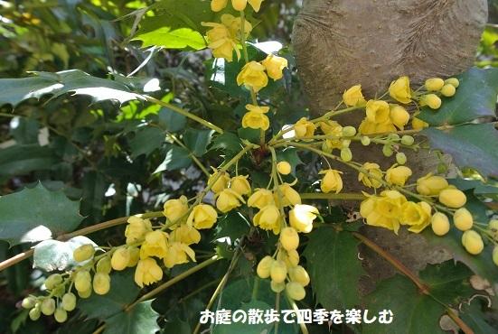 hiiragi7_20190320202129c29.jpg