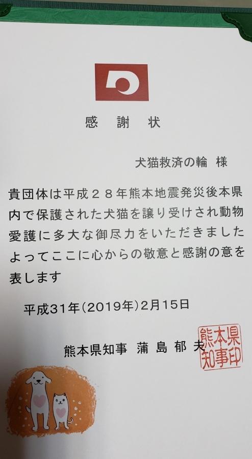 20190307_171053.jpg