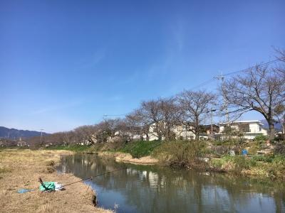 堅田は昼過ぎ頃まで快晴微風の絶好の釣り日和でした