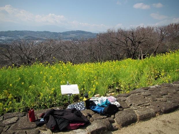 19.3.5 スケッチハイク・吾妻山  (27)