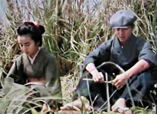19.3.16 巨大しいいたけ(椎茸)、映画「伊豆の踊子」 (5)