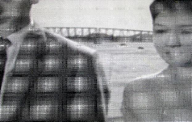 3 19.3.24 浮雲前半 1955年 成瀬巳喜男
