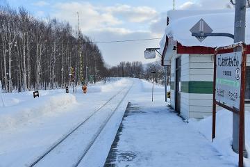 北海道旅行201901(22)