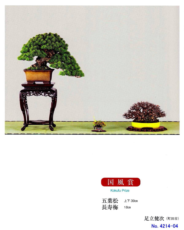 FC0027-04.jpg