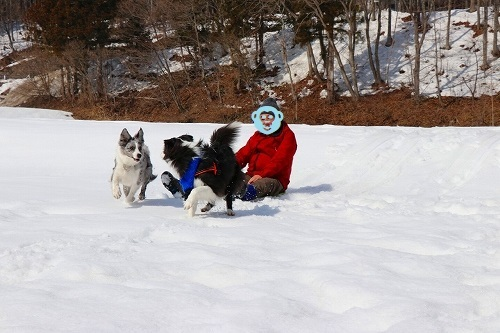 s-2019223白馬de雪あそび_190228_0002