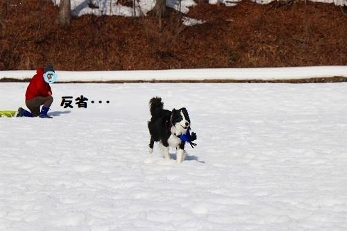 s-2019223白馬de雪あそび_190228_0050