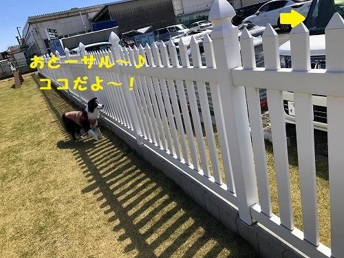 s-IMG_5650_5.jpg