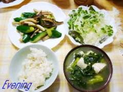 20040811_yu.jpg