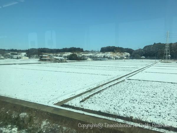 2019SFC_MileageRun_snow-4.jpg