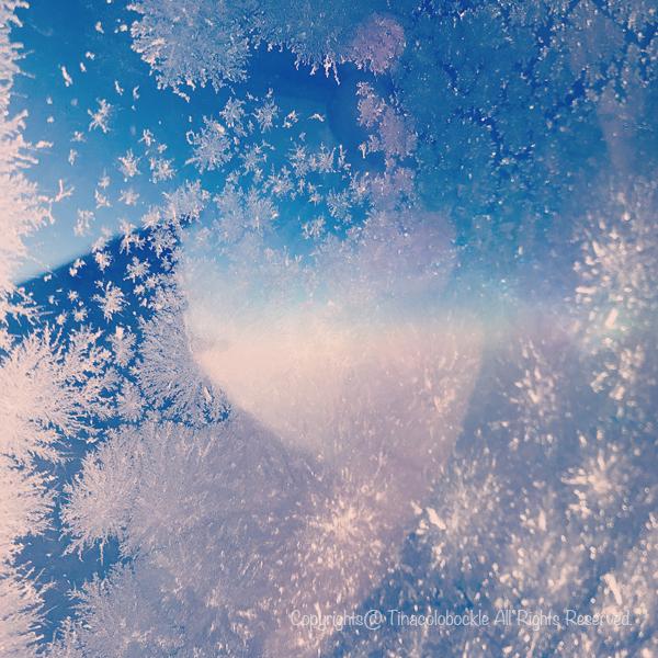 2019SFC_MileageRun_snow-5.jpg