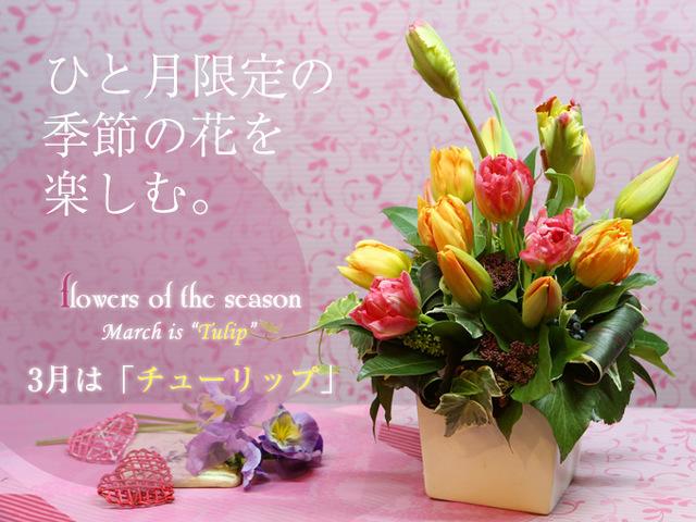 チューリップ 春 入学 卒業 プレゼント お祝い 合格 誕生日 サプライズ