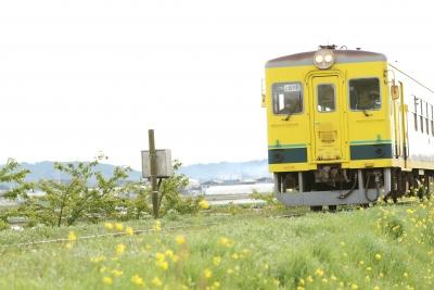 shuku_5W5A8991.jpg