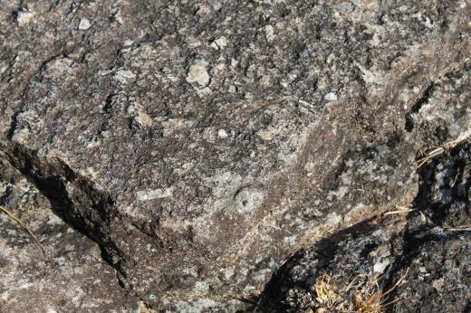 斑状花崗岩IMG_3154_convert_20190314210249