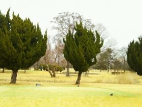 板倉ゴルフ3