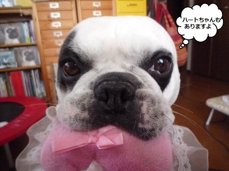 にこら201011to201108 2749