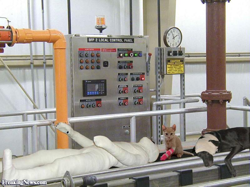 0305Patients-on-a-Hospital-Coveyor-Belt