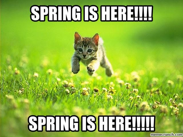 0325春だ春だ