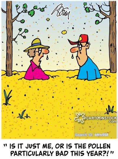 0325今年の花粉はいつも濃い