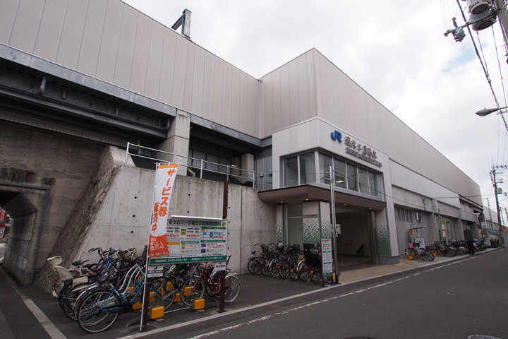 20190324_shirokita_koen_dori-02.jpg