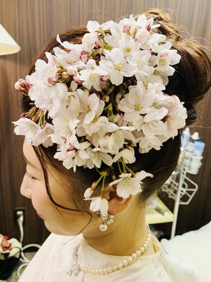 hitomi20190330kita_koshi1.jpg