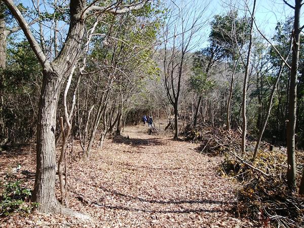 Trail road 2019