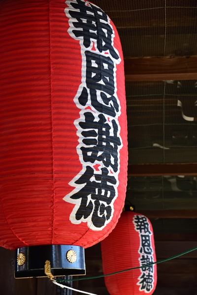 _20190114_takada (50)