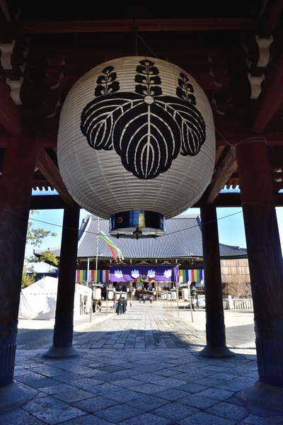 _20190114_takada (57)