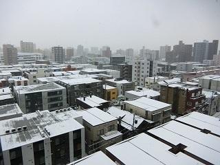 0316降雪