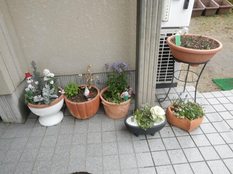 ss-小鉢