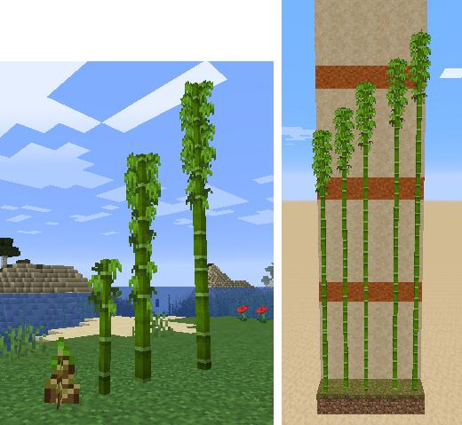 update_block_bamboo_8.png
