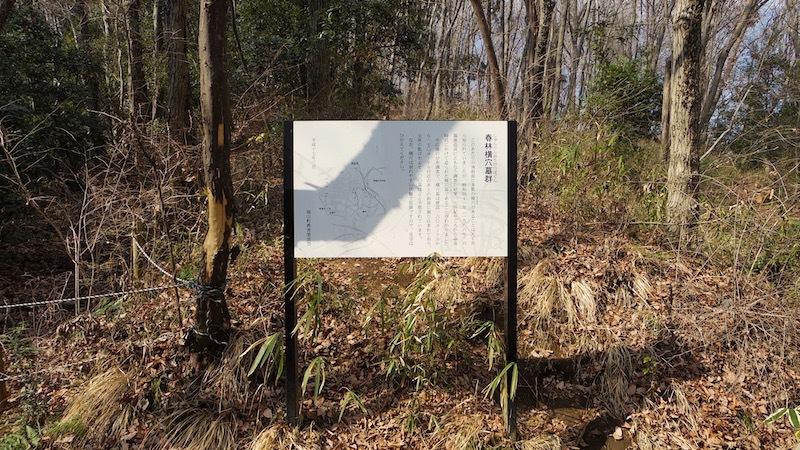 「春林横穴墓群」