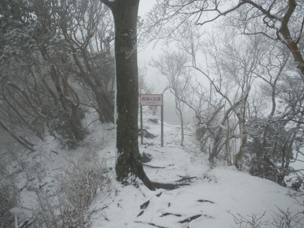 愛鷹山 017