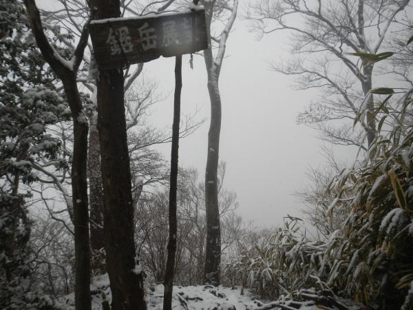 愛鷹山 014