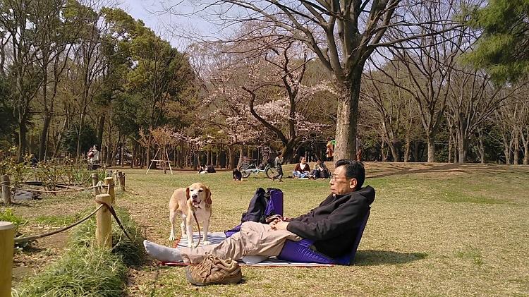 20190327代々木公園ピクニック