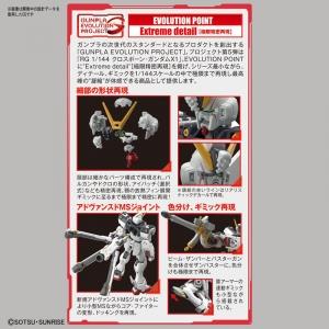 RG クロスボーン・ガンダムX1 (8)