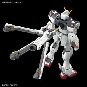 RG クロスボーン・ガンダムX1 (4)
