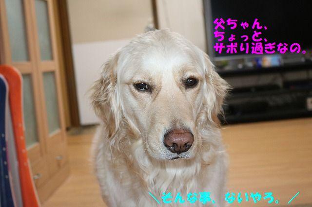 IMG_6268.jpg