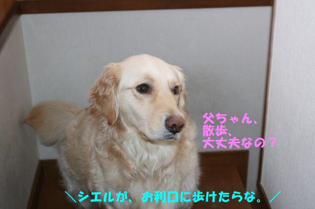 IMG_6296.jpg