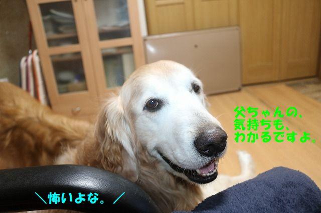 IMG_6349.jpg