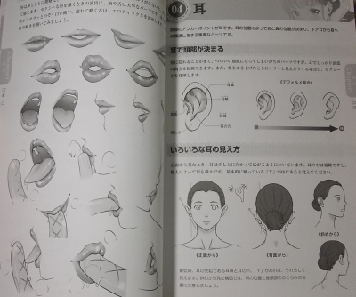 女の子の人体パーツの描き方 (4)