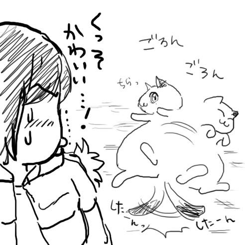 0313hakushuresa_neko.jpg