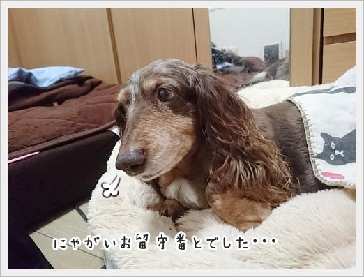fc2_2019-03-16_01.jpg