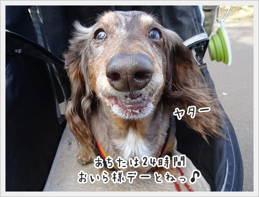 fc2_2019-03-29_01.jpg