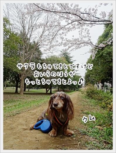 fc2_2019-04-02_03.jpg