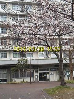 190330_1557~001